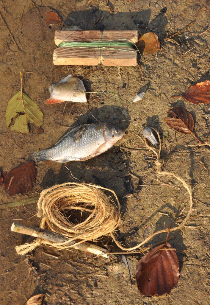 Pytlačka s rybkou