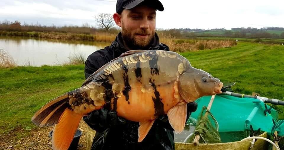 největší ryba