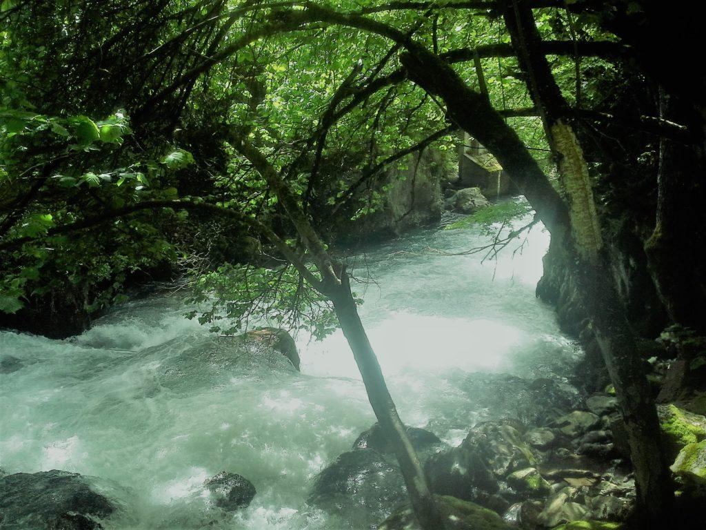 Radika řeka prudká