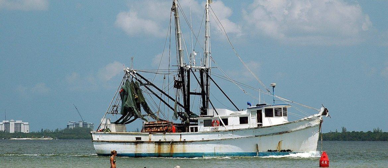 námořní rybolov
