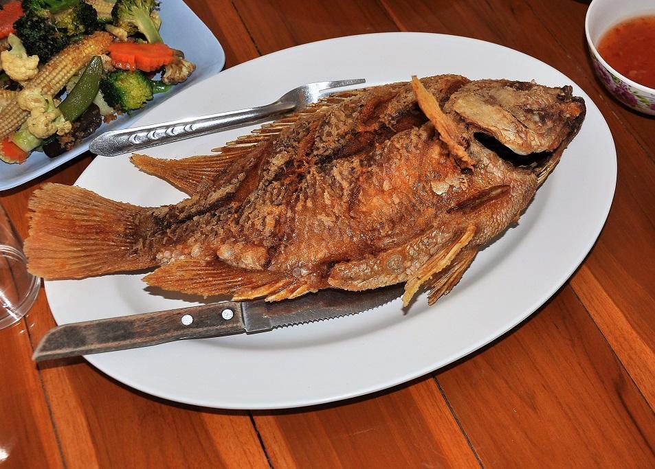 tilápie chutná ryba