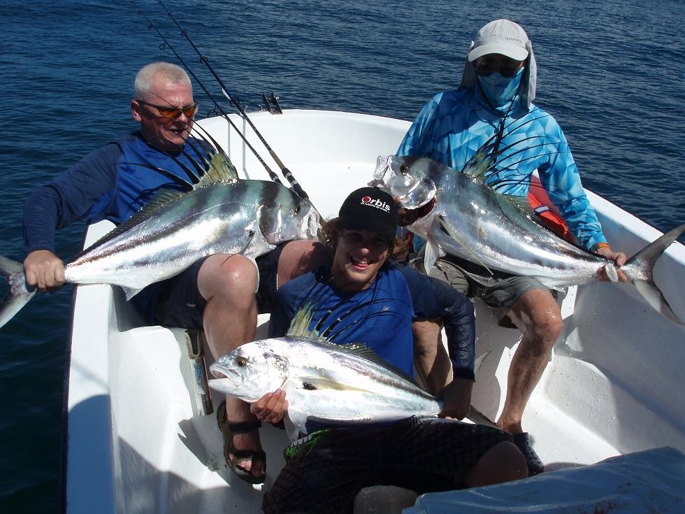 mořské ryby kohoutovci