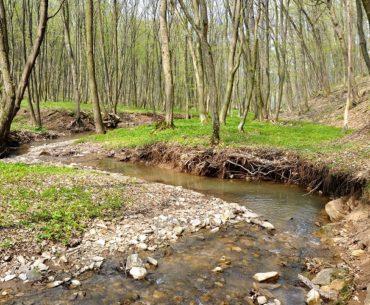 meandrující řeka